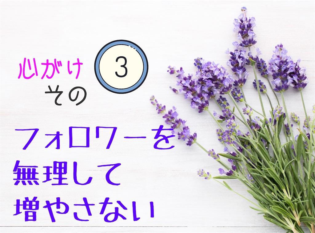 f:id:suzu-amayadori:20200513194754j:image