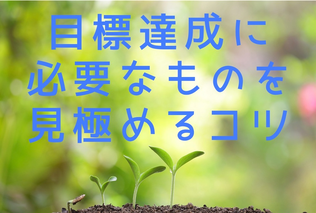 f:id:suzu-amayadori:20200624220127j:image