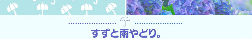 f:id:suzu-amayadori:20200712232939p:plain