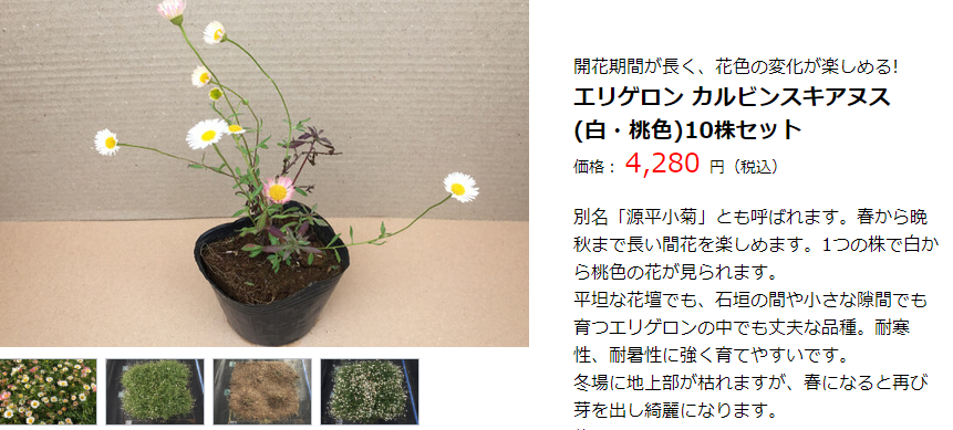 f:id:suzuike1954:20190919220956p:plain