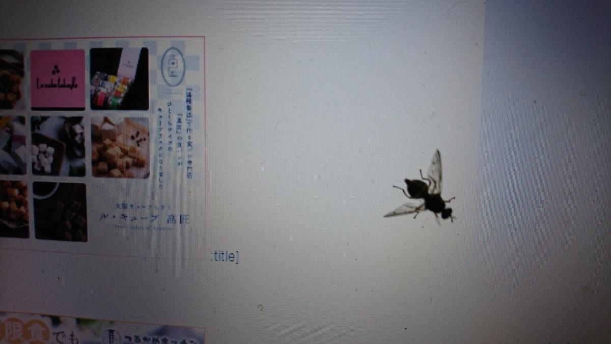 f:id:suzuike1954:20191223224041j:plain