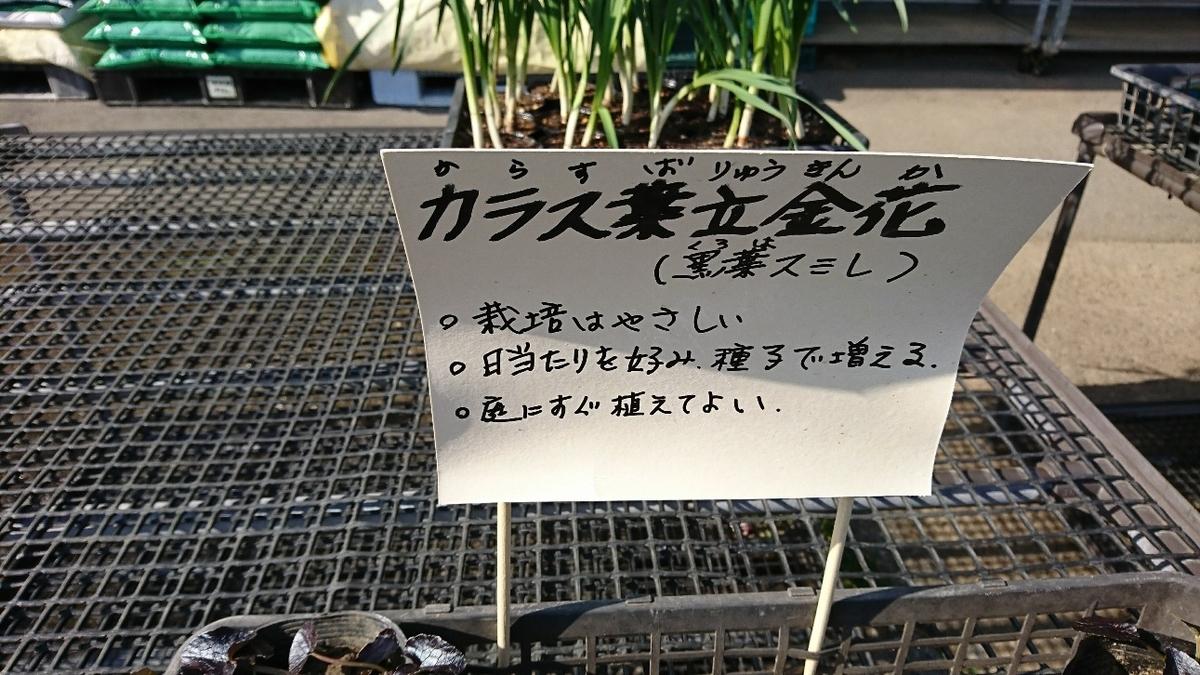 f:id:suzuike1954:20200225015610j:plain