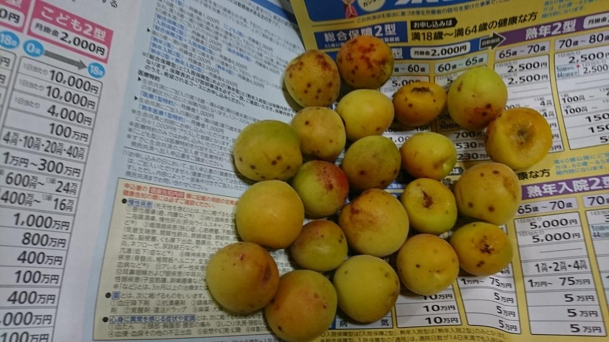 f:id:suzuike1954:20200606225644j:plain