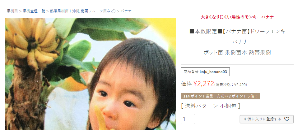 f:id:suzuike1954:20200802132011p:plain