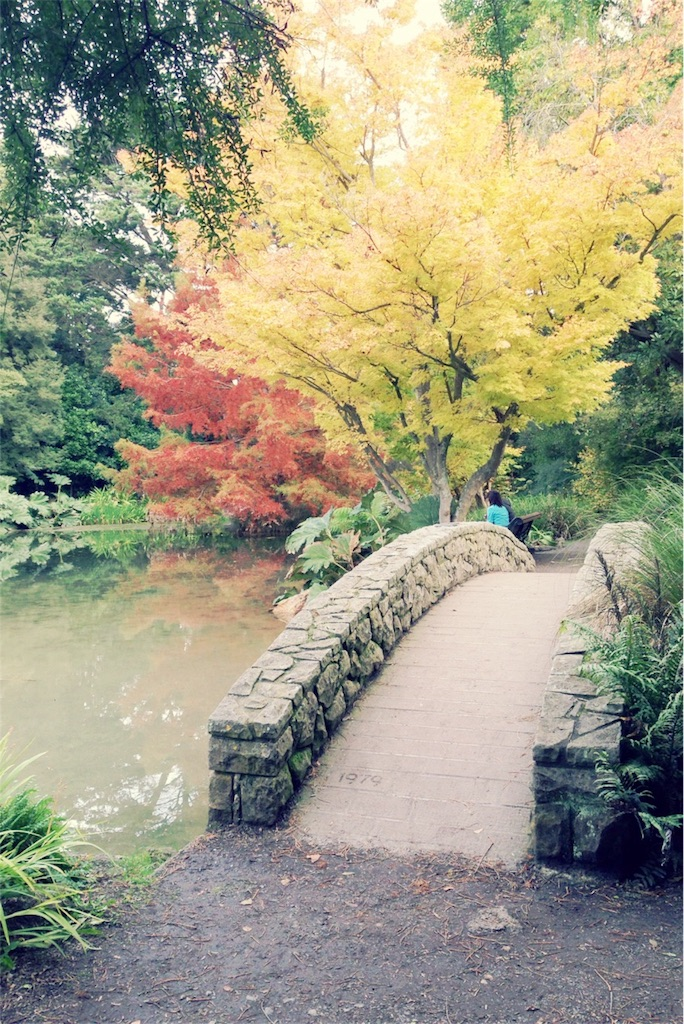 f:id:suzuka-life:20170410210943j:image
