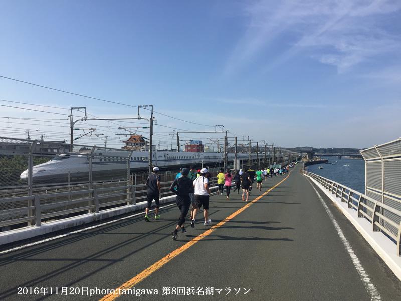 f:id:suzuka-mieken:20161121133740j:plain