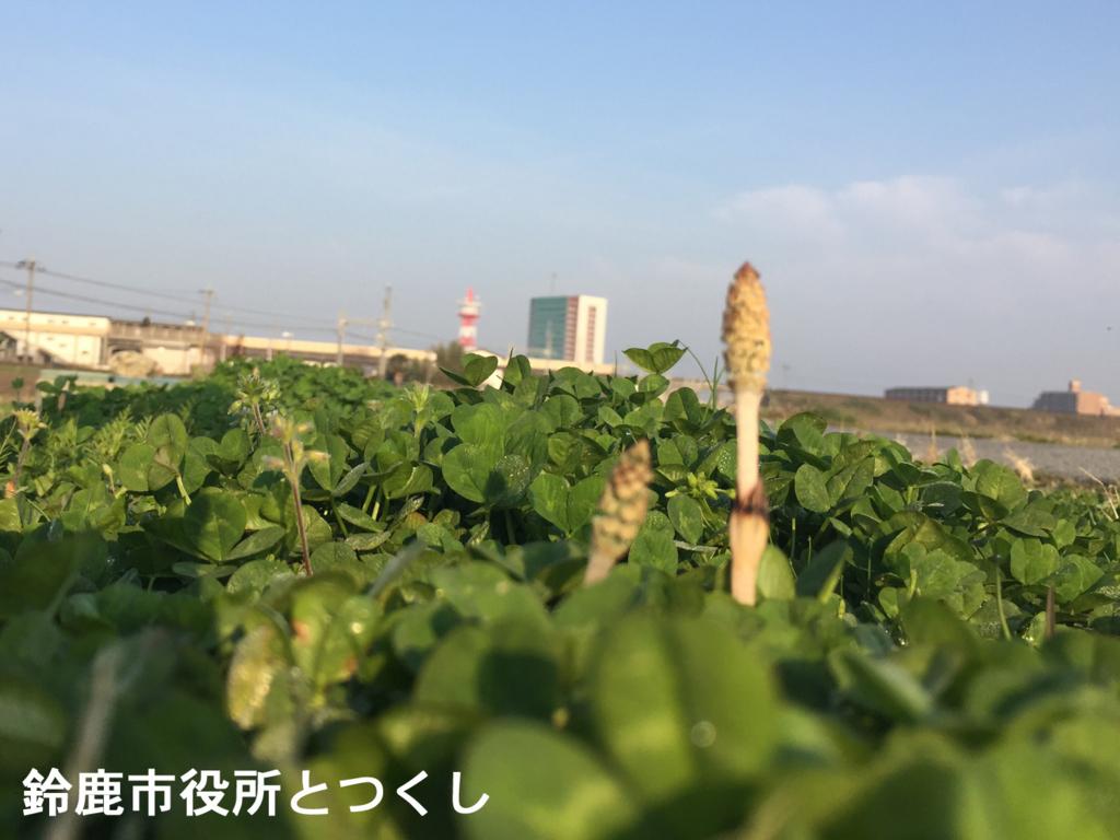 f:id:suzuka-mieken:20180317084538j:plain