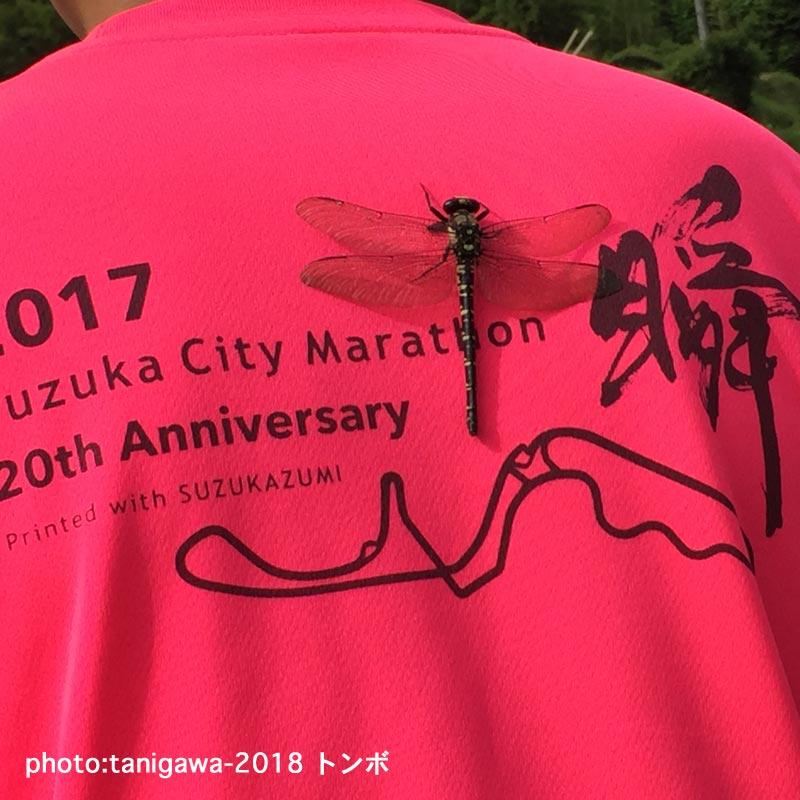 f:id:suzuka-mieken:20180626135433j:plain