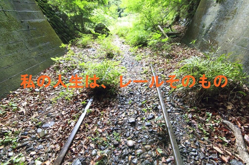 f:id:suzukaya_jp:20180918010809j:plain