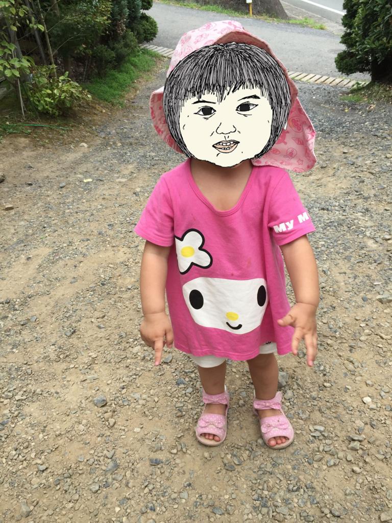 f:id:suzuki21m:20170611213253j:plain