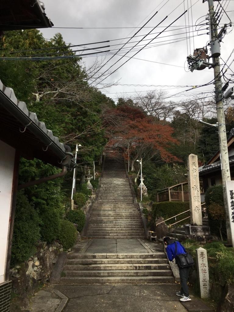 f:id:suzuki_seminar:20171205135414j:plain