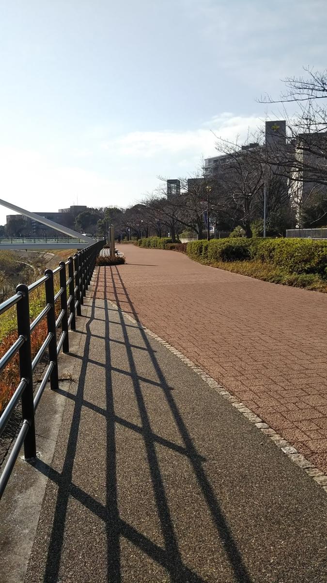 f:id:suzuki_shamoji:20200112013325j:plain