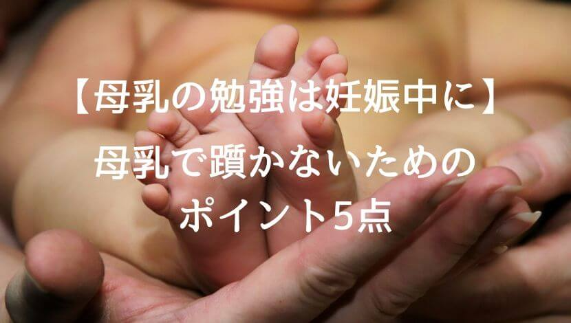 f:id:suzuki_shamoji:20200530013244j:plain