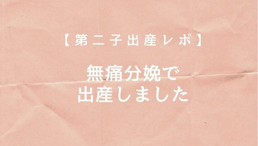 f:id:suzuki_shamoji:20200602232939j:plain