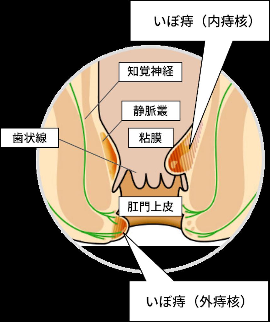 f:id:suzukichoclinic:20201024081334p:image