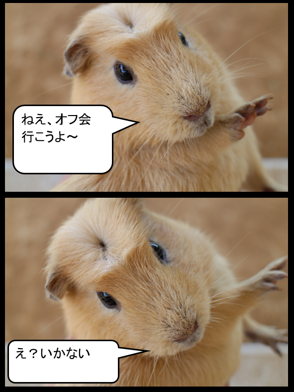 f:id:suzukidesu23:20140727115901p:plain