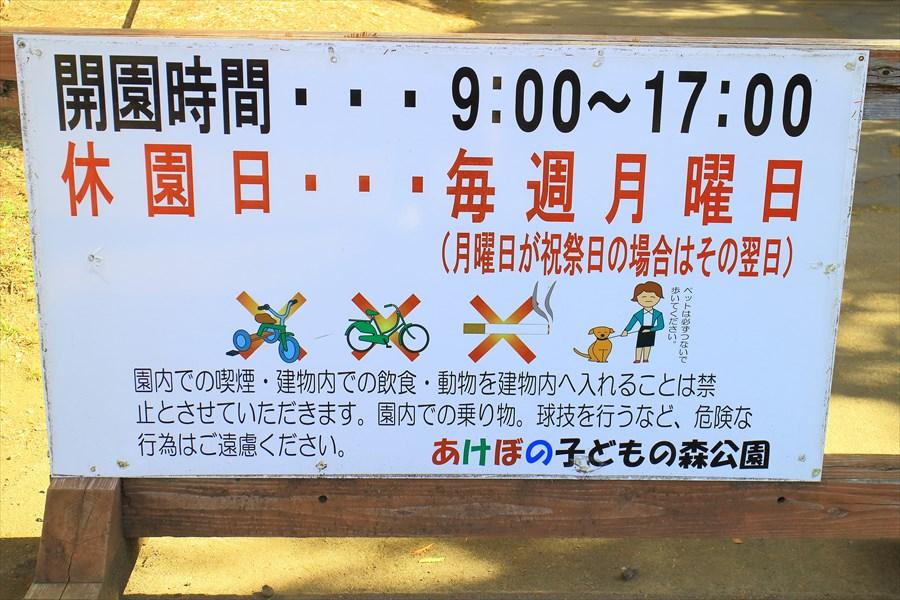 f:id:suzukidesu23:20141114132009j:plain