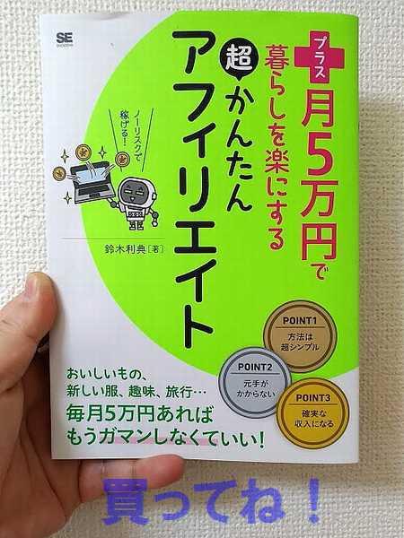 f:id:suzukidesu23:20170106095309j:plain