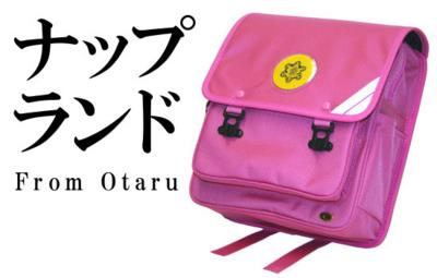 f:id:suzukishika:20110113140047j:image