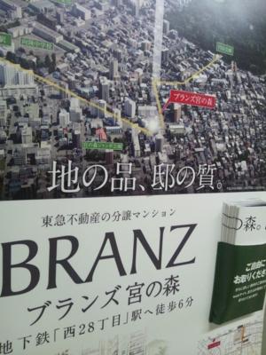 f:id:suzukishika:20130131110025j:image