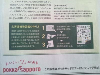f:id:suzukishika:20130131110033j:image