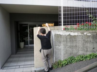 f:id:suzukishika:20130731115258j:image