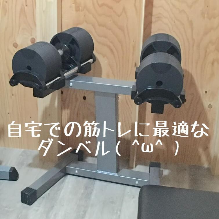 f:id:suzukitubasa2:20180614192640j:plain