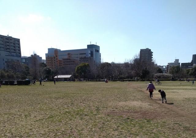 f:id:suzukiyasumu:20190409191543j:plain