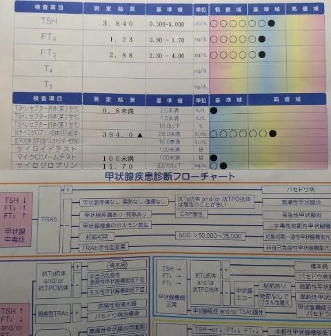f:id:suzukiyasumu:20190709115651j:plain
