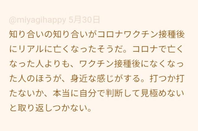 f:id:suzukiyasumu:20210603092214j:plain