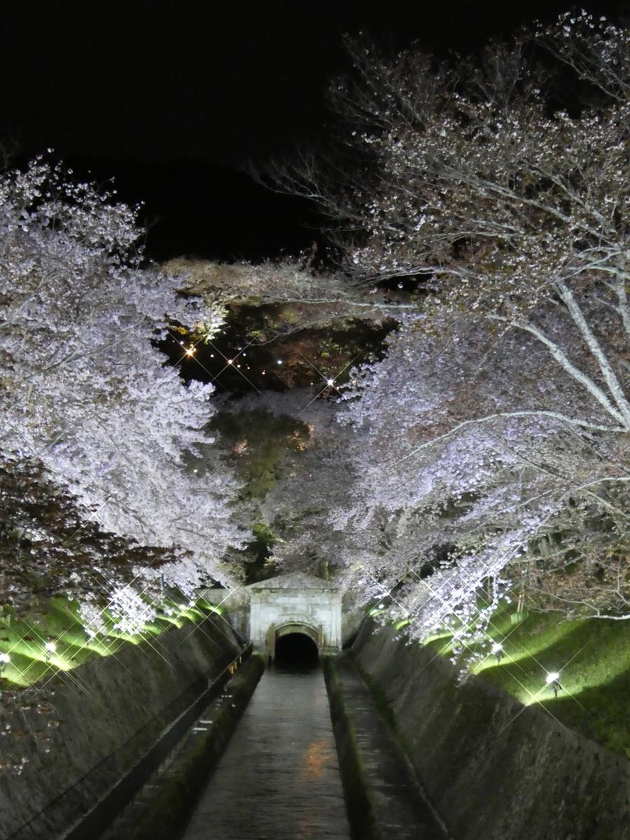 f:id:suzukokage:20190413200605j:plain