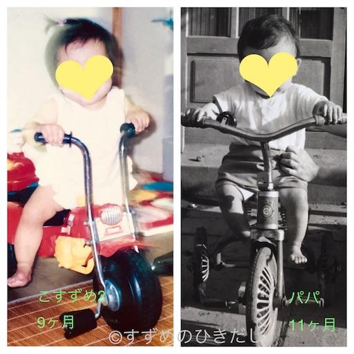 f:id:suzume-hikidashi:20180517213359j:image