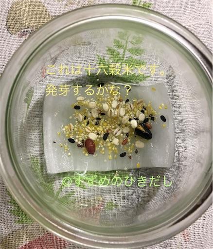 f:id:suzume-hikidashi:20180529182426j:image