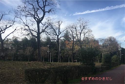f:id:suzume-hikidashi:20181205181050j:image