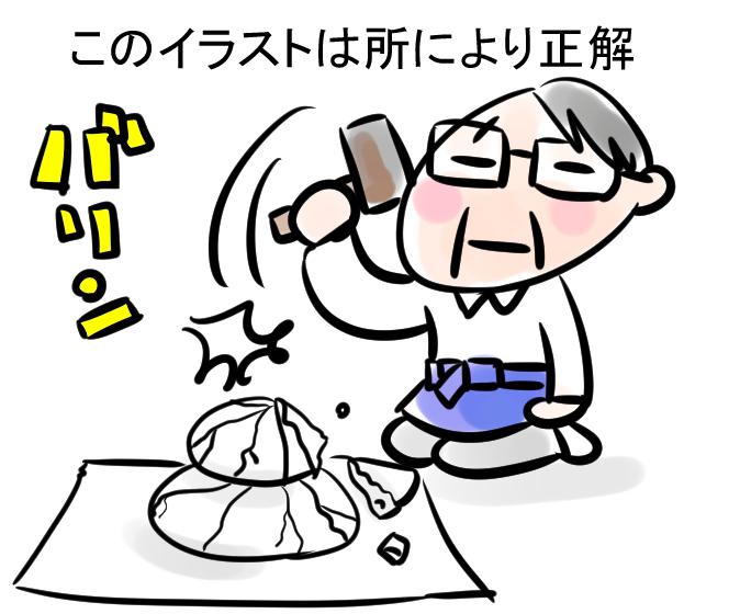 f:id:suzume-kitakiri:20190110192316j:plain