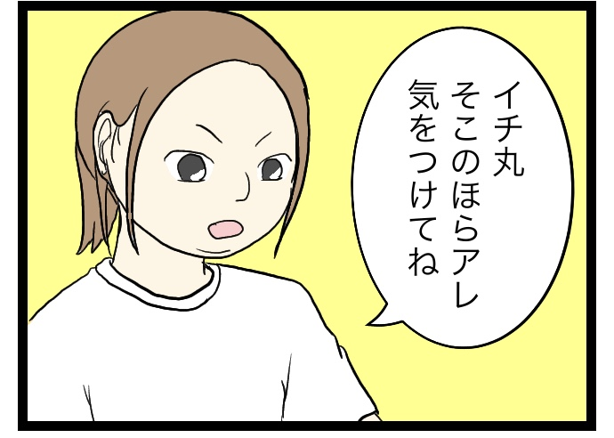 f:id:suzume-no-su:20200605152241j:plain