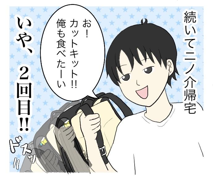f:id:suzume-no-su:20200708001702j:plain