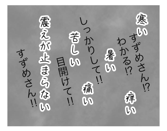f:id:suzume-no-su:20200805233130j:plain
