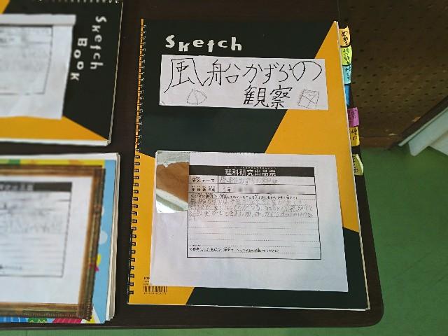 f:id:suzumenohakama:20180909102625j:image