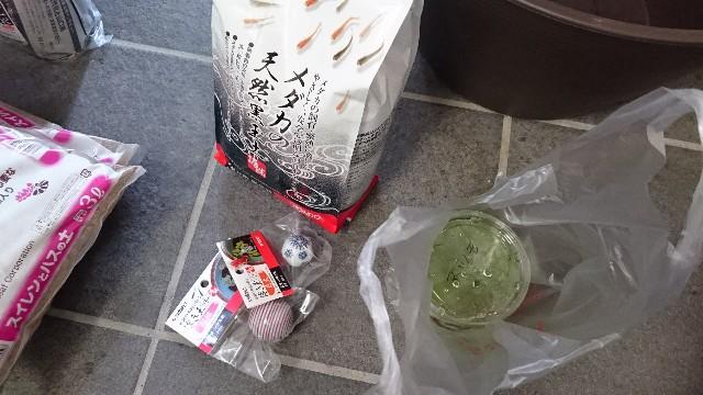 f:id:suzumenohakama:20181110155148j:image