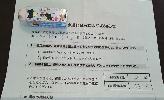 f:id:suzumenohakama:20181113132652j:image