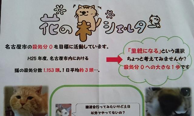 f:id:suzumenohakama:20181129141812j:image