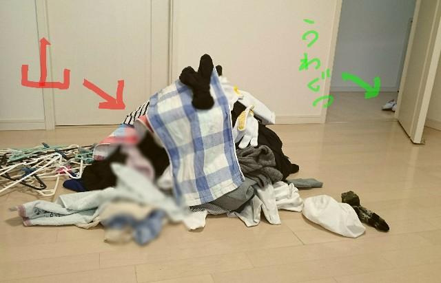 f:id:suzumenohakama:20190127170327j:image