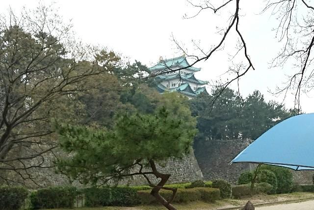 f:id:suzumenohakama:20190331074742j:image