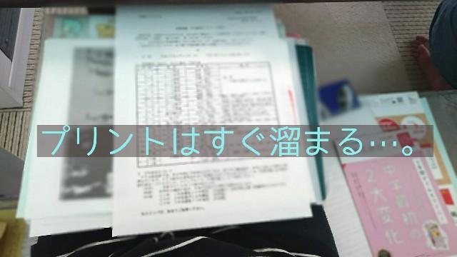 f:id:suzumenohakama:20190501222004j:image
