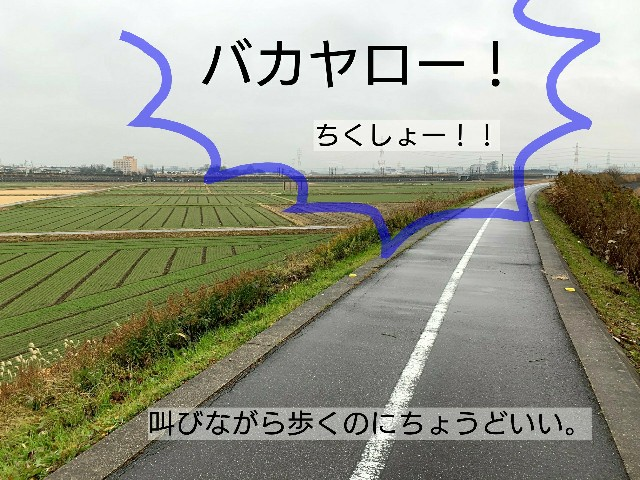 f:id:suzumenohakama:20191231014942j:image