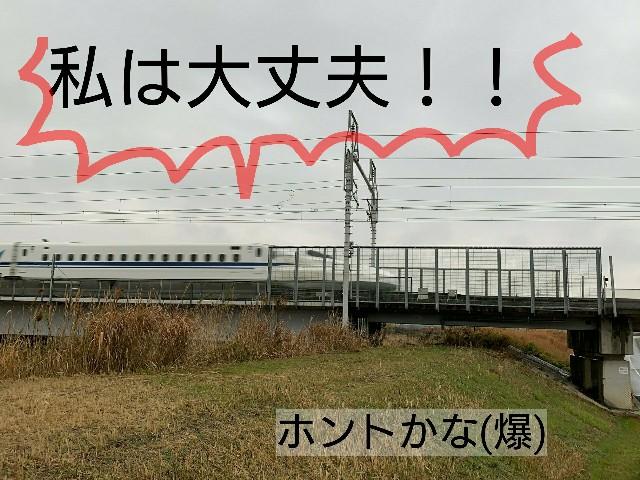 f:id:suzumenohakama:20191231015547j:image