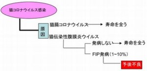 f:id:suzumesuzume:20180710150317j:plain
