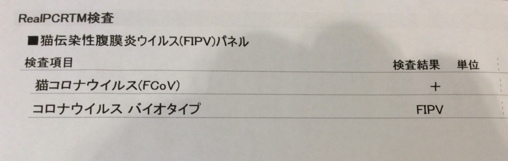 f:id:suzumesuzume:20180710150640j:plain
