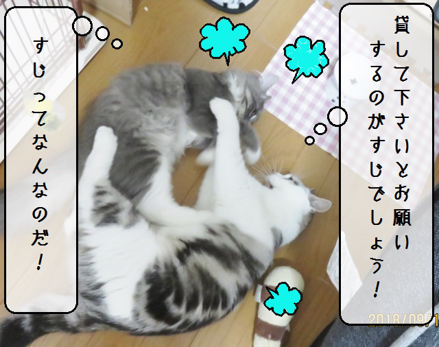 f:id:suzumesuzume:20180919150039j:plain